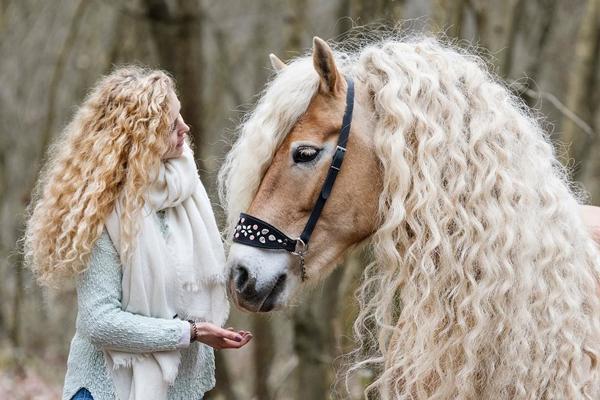هر دختری به مو های این اسب حسادت می کند!