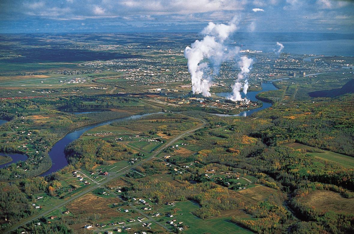 آشنایی با جنگلداری در کانادا
