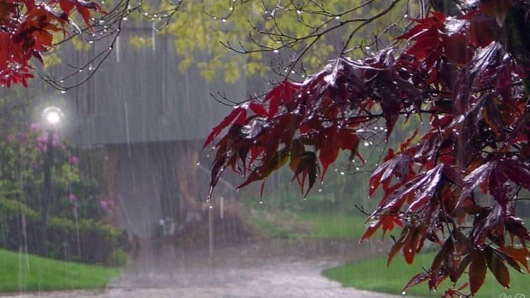 رکورد بارندگی های 32 ساله شهر تهران شکسته شد