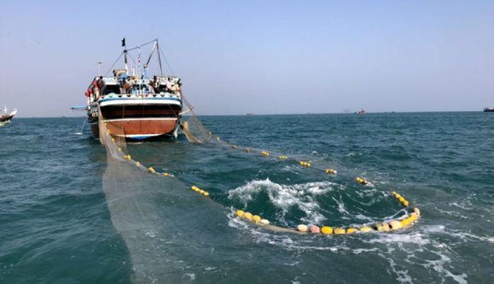 عمرانی: جناب قاضی مگر قرارمان ممنوعیت صید ترال در دریای مکران نبود؟!