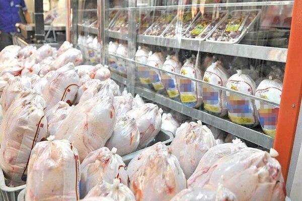 رشد سرسام آور قیمت مرغ