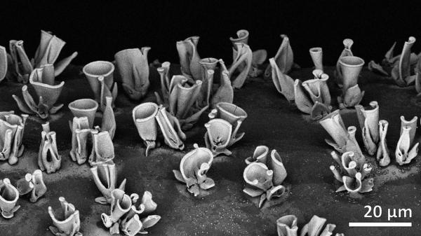 چگونه با خودآرایی، نانوکامپوزیت های کاربردی بسازیم؟