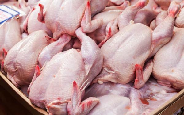 گوشت مرغ رکوردار رشد قیمت در فروردین ماه شد